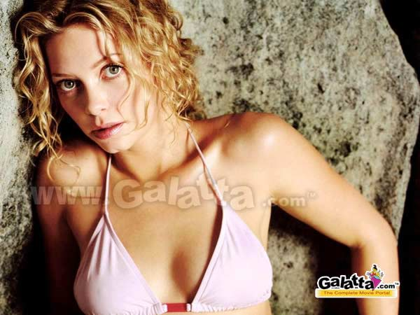 Amanda Detmer Photos
