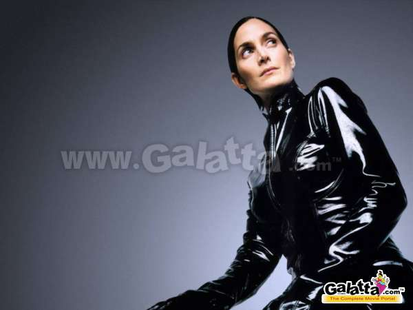 Carrie Anne Moss Actress Wiki
