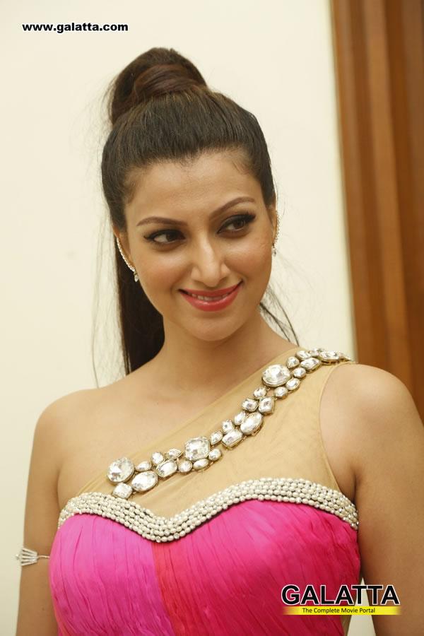 Hamsa Nandhini Actress Wiki