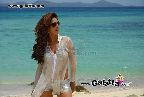 Kimsharma Actress Wiki