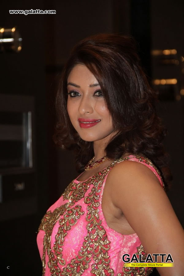 Payal Ghosh Actress Wiki