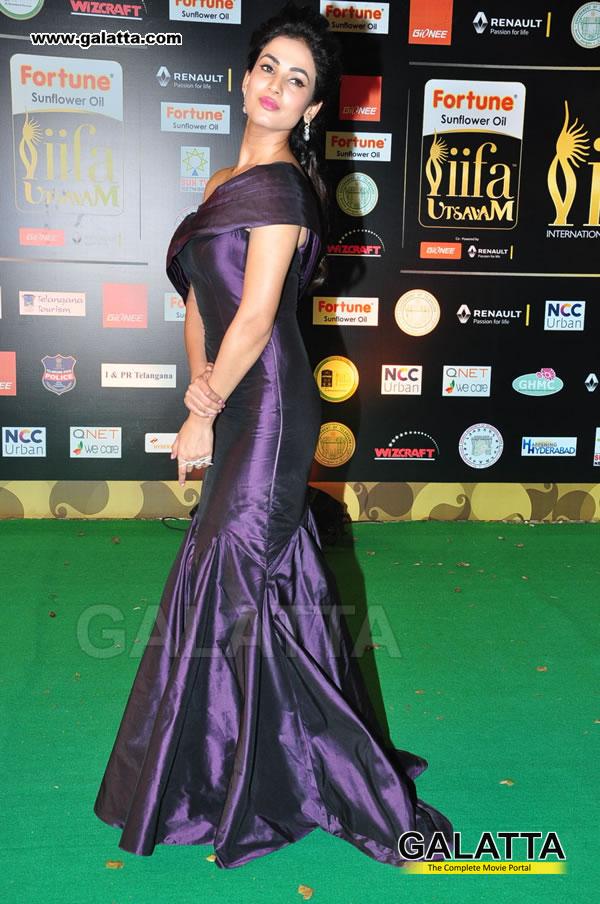 Sonal Chauhan Actress Wiki